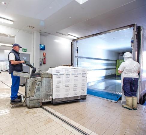 fish processing company
