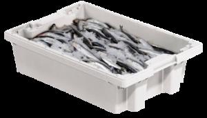 caja con pescado