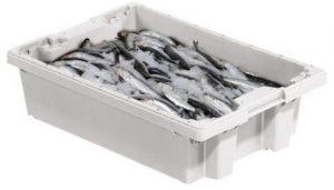 cajas pescado asturpesca