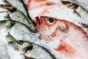 pescados frescos atlantico