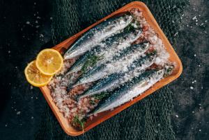 pescado preparado distribuidor españa