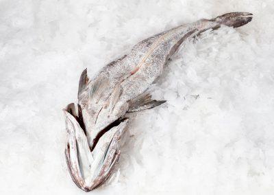 merluza fresca asturias