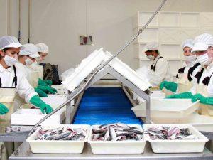 asturpesca distribuidor pescado españa