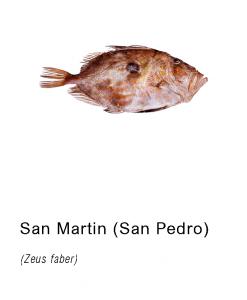 san martin pescado asturpesca