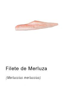 filete merluza distribucion