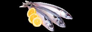 pescado blanco fresco atlantico