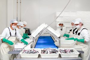 asturpesca distribucion pescado