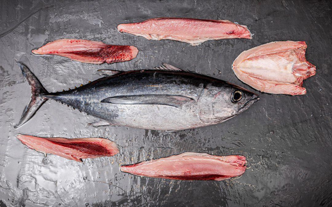 White tuna season 2021