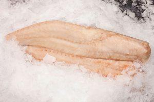 filete de merluza congelado calidad
