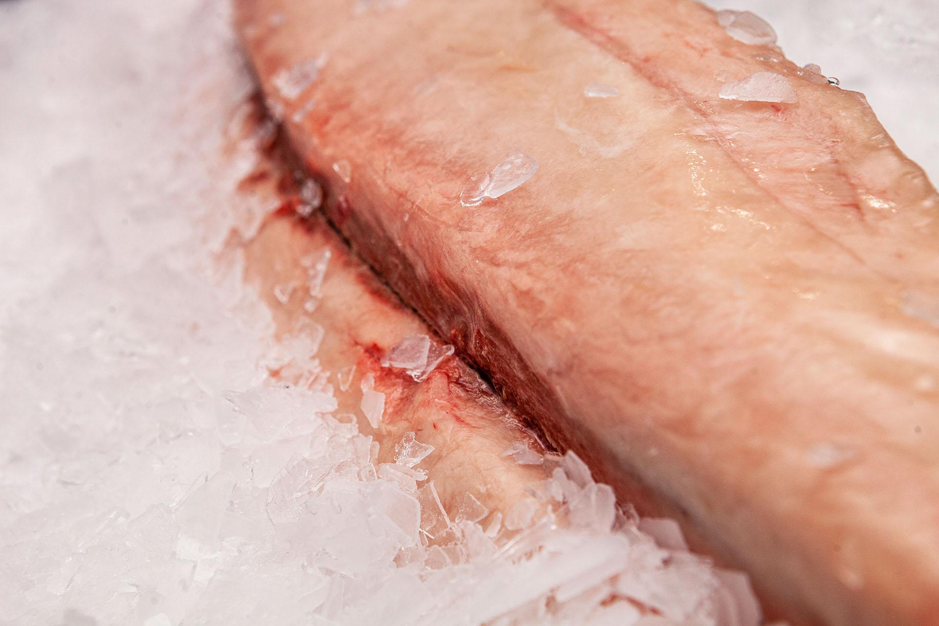 Frozen tuna ventresque