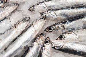 bocarte congelado pescado asturias