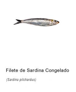 filete sardina congelado asturpesca