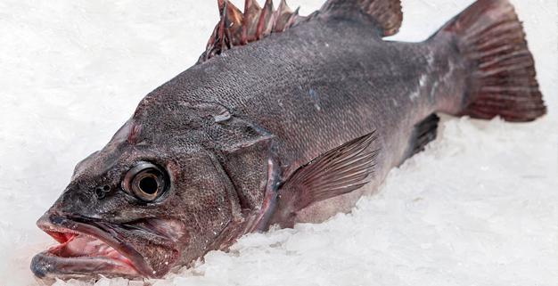 Datos sobre el consumo de pescado en España durante 2019