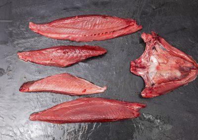bigeye tuna loin