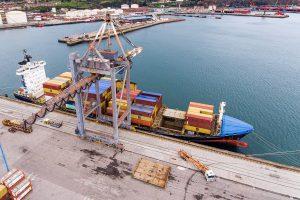 exportacion al por mayor asturpesca