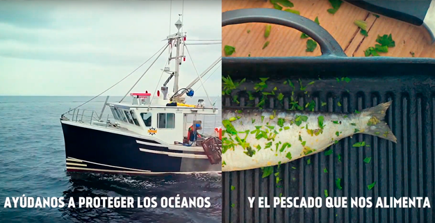ASTURPESCA, a company committed to sustainable fishing