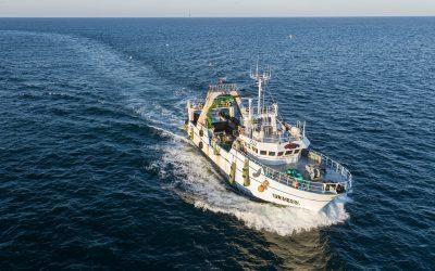Journée mondiale de la pêche. 21 novembre.