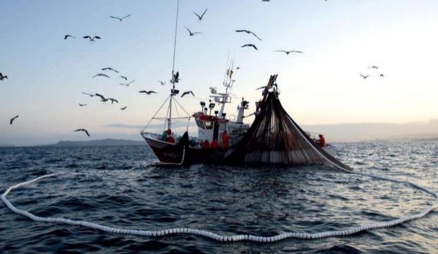 Las diferentes calidades del pescado según el Arte de Pesca empleado en su captura.